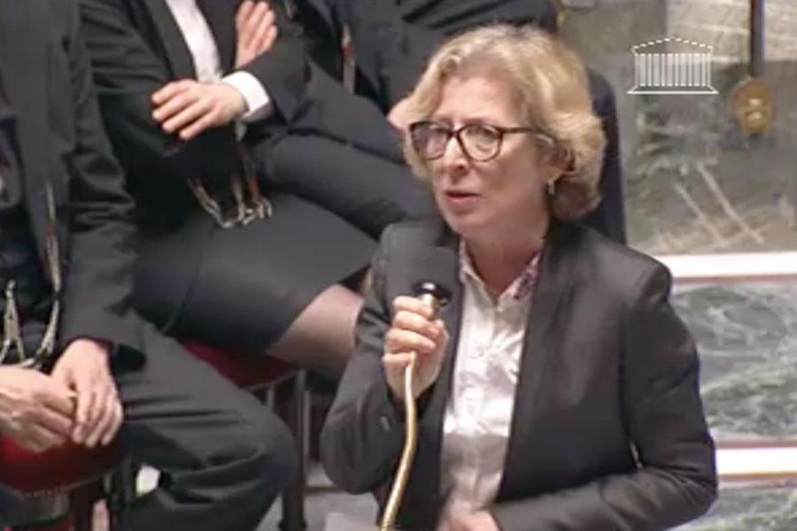 Geneviève Fioraso parle des MOOCs à l'Assemblée Nationale