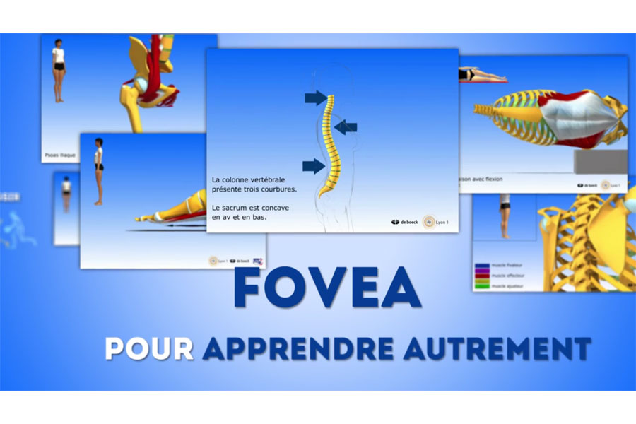 FOVEA, un MOOC basé sur la technologie 3D