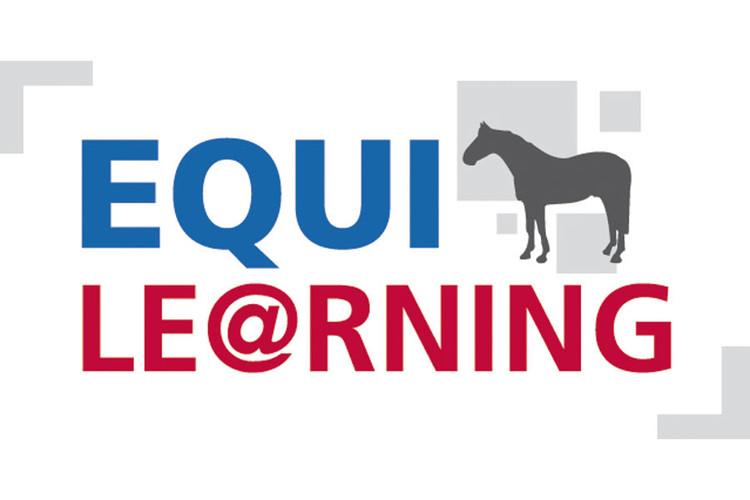 Logo Equi-Le@rning