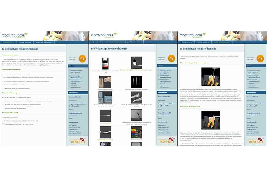 Pages écrans de T.P. d'odontologie