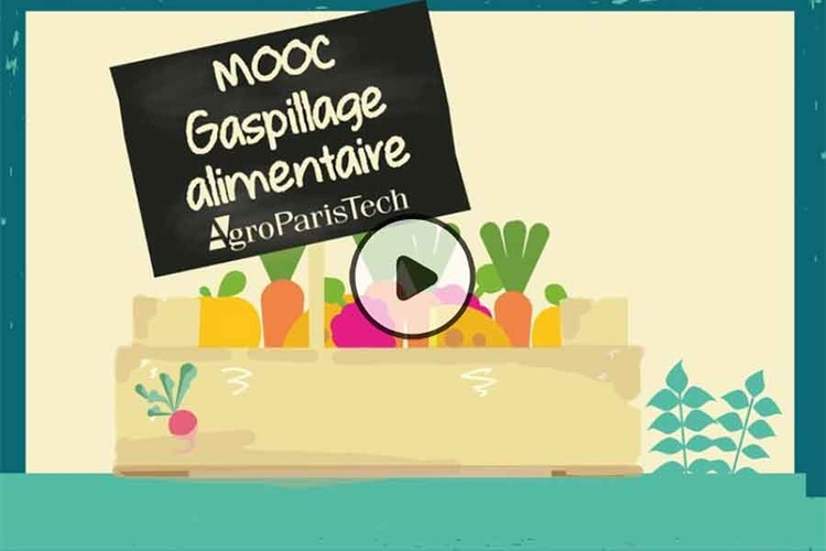 MOOC Gaspillage alimentaire