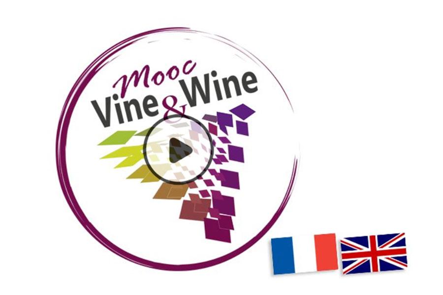 MOOC Vine & Wine