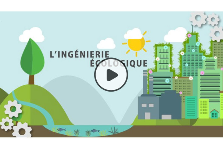 MOOC Ingénierie écologique