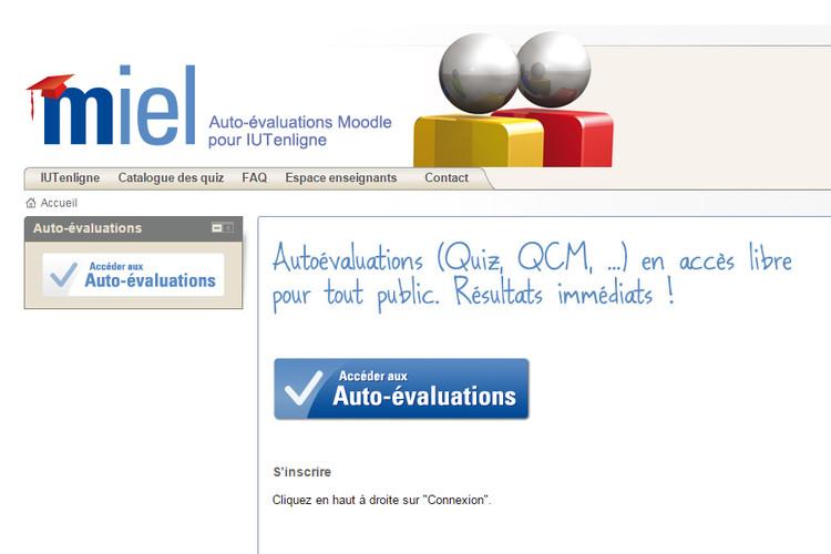 MIEL : auto-évaluations de niveau licence